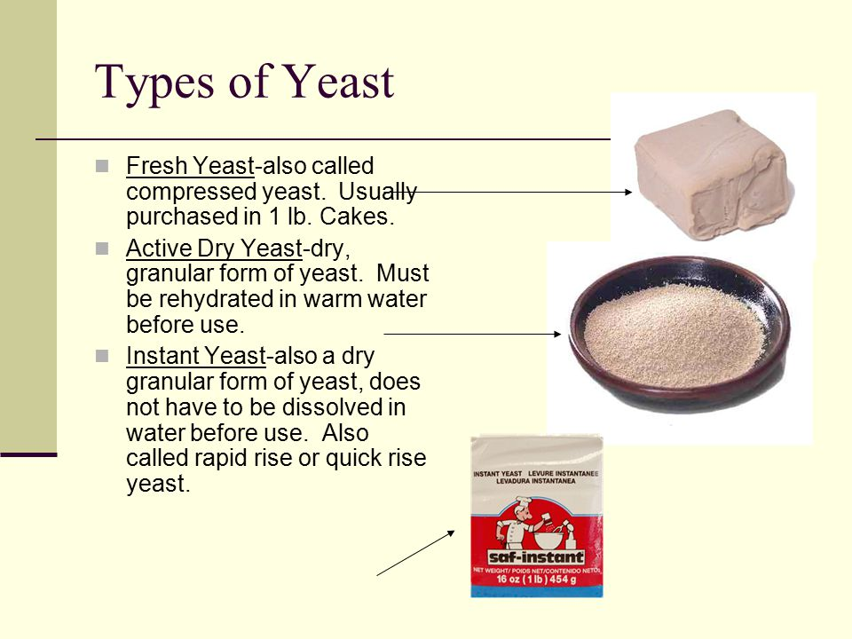 Types of Yeast Fresh Yeast-also called compressed yeast. Usually purchased in 1 lb. Cakes.