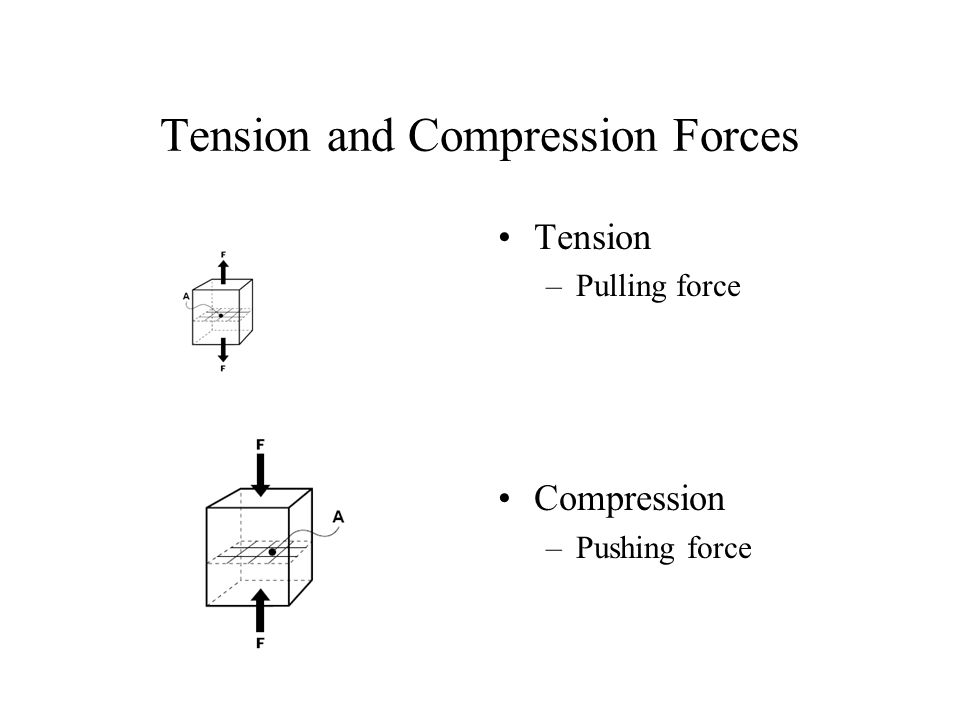 Tension and Compression Forces