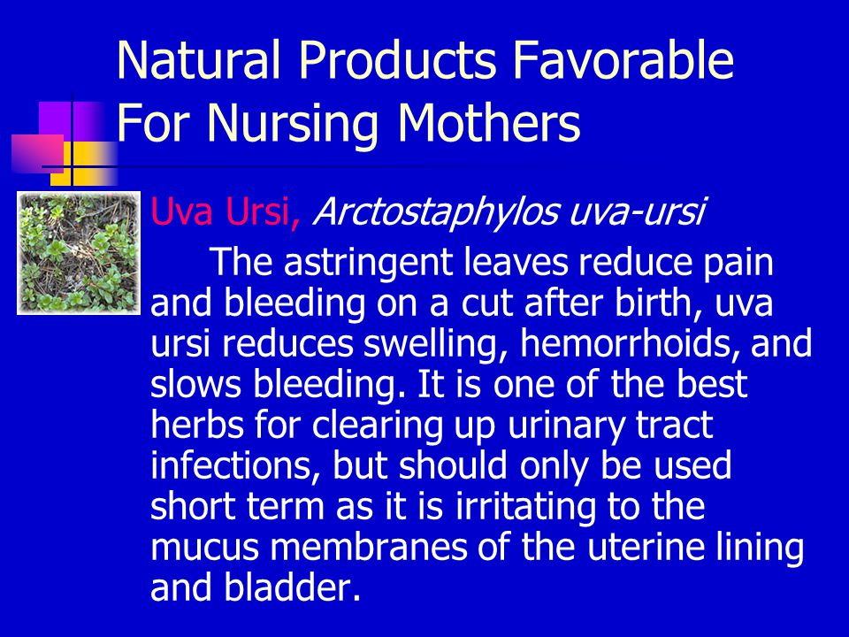 Natural Products Favorable For Nursing Mothers