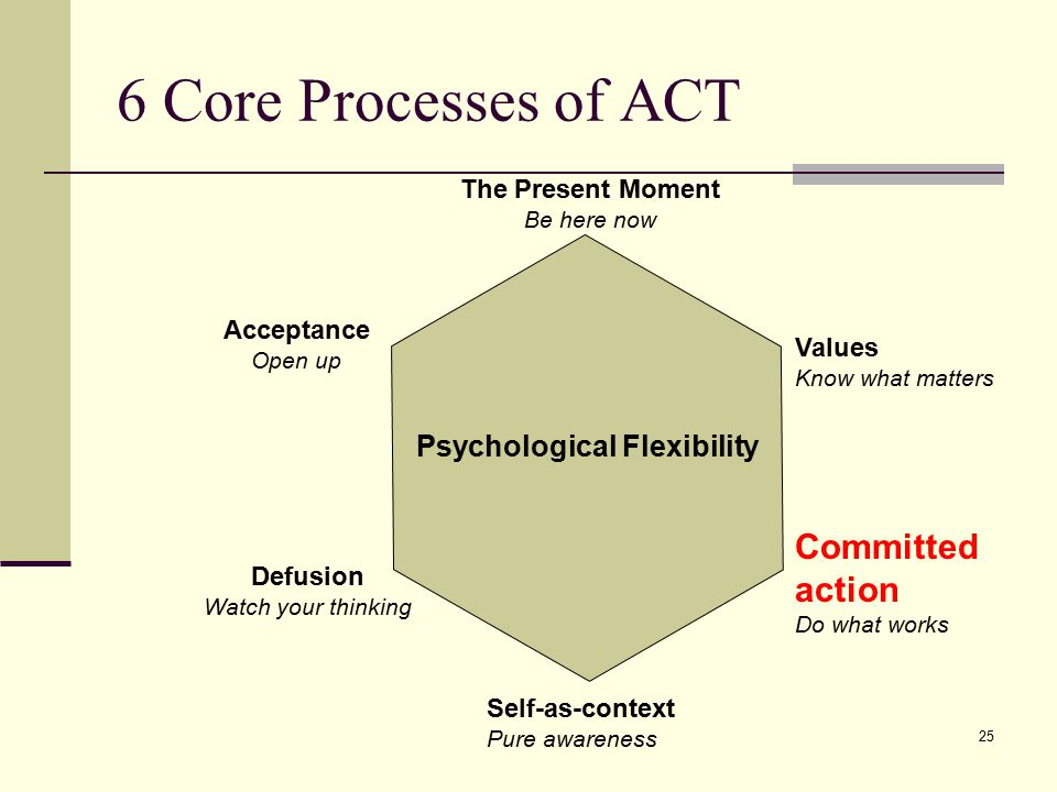 6 Core Processes of ACT Committed action Psychological Flexibility