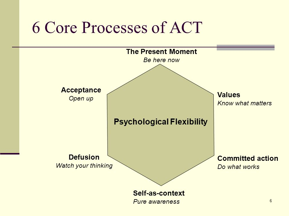 6 Core Processes of ACT Psychological Flexibility The Present Moment