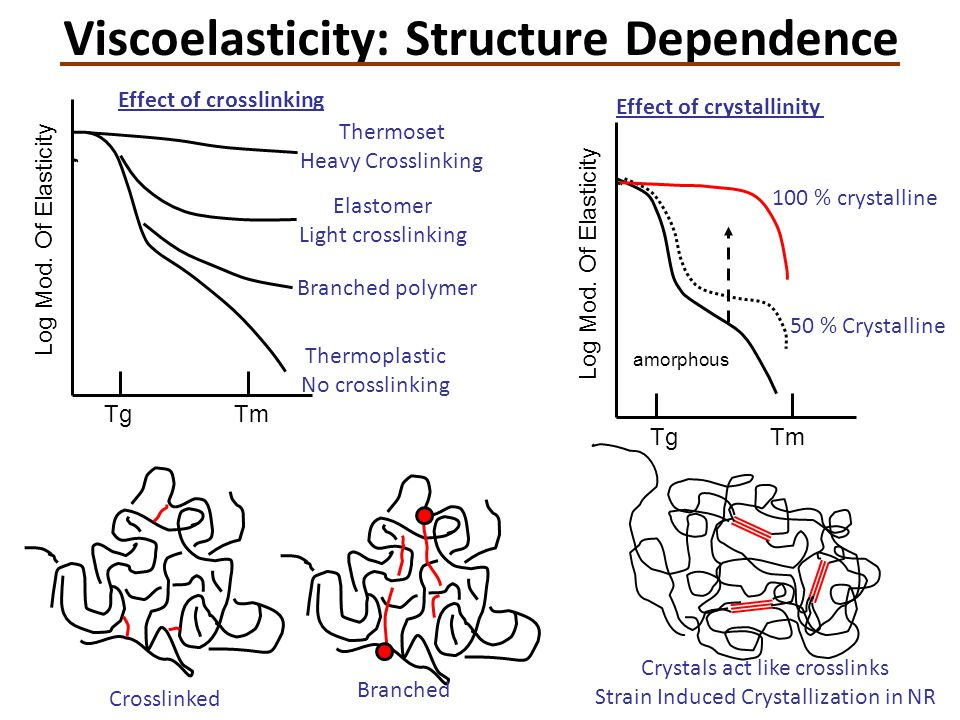 Viscoelasticity: Structure Dependence