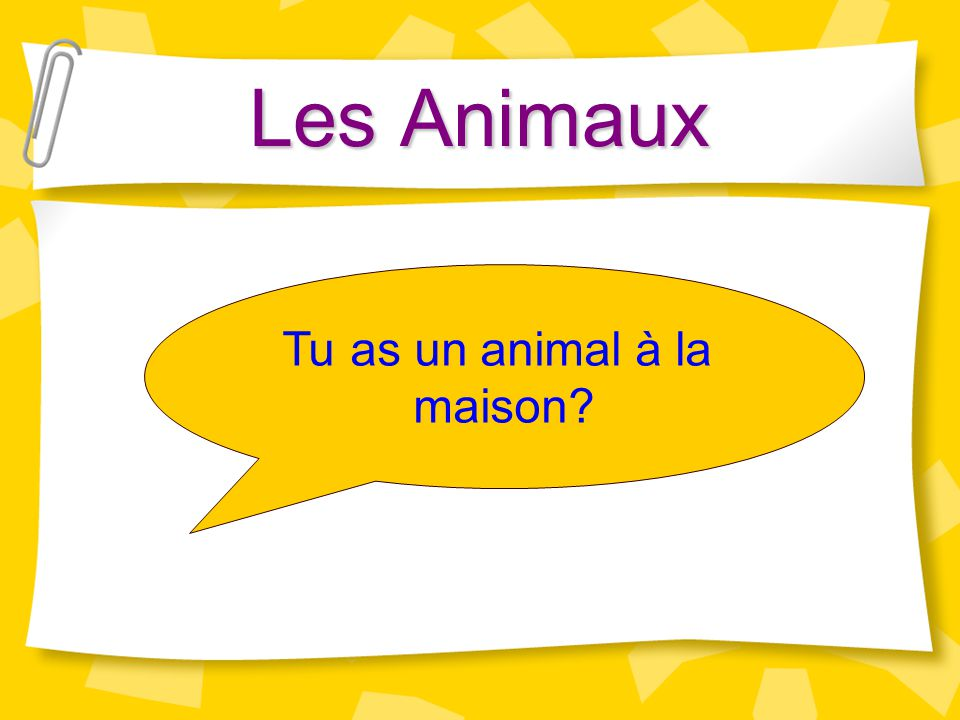 Les Animaux Tu as un animal à la maison