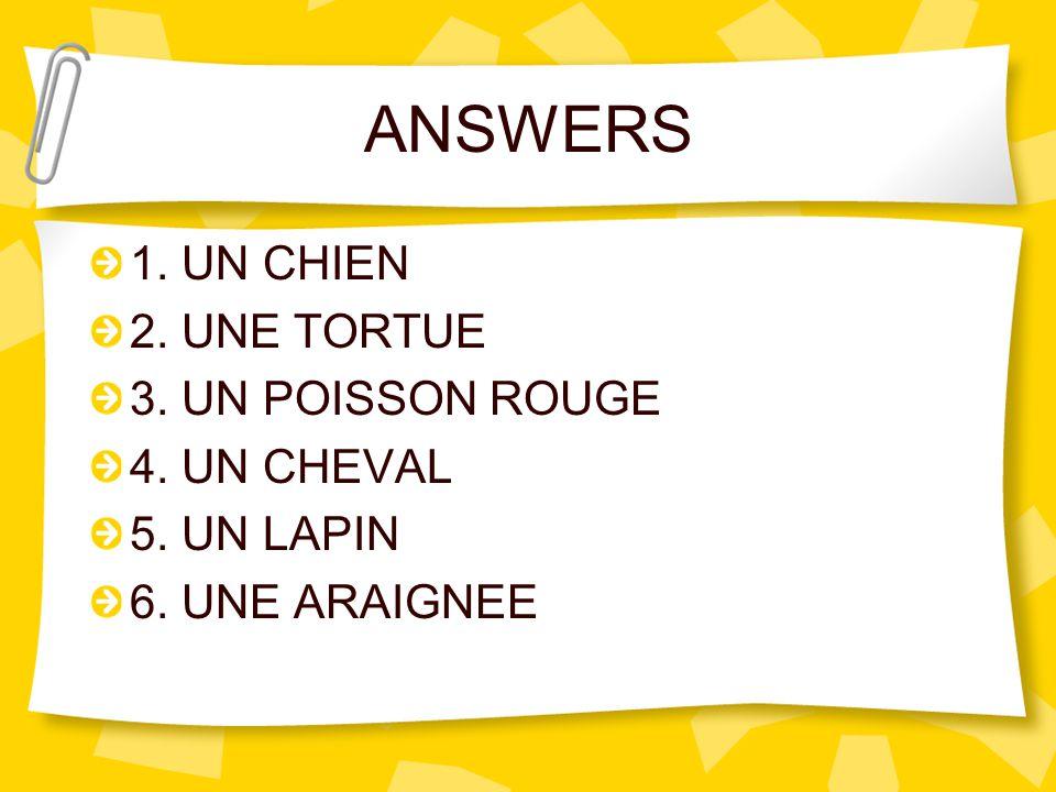 ANSWERS 1. UN CHIEN 2. UNE TORTUE 3. UN POISSON ROUGE 4. UN CHEVAL