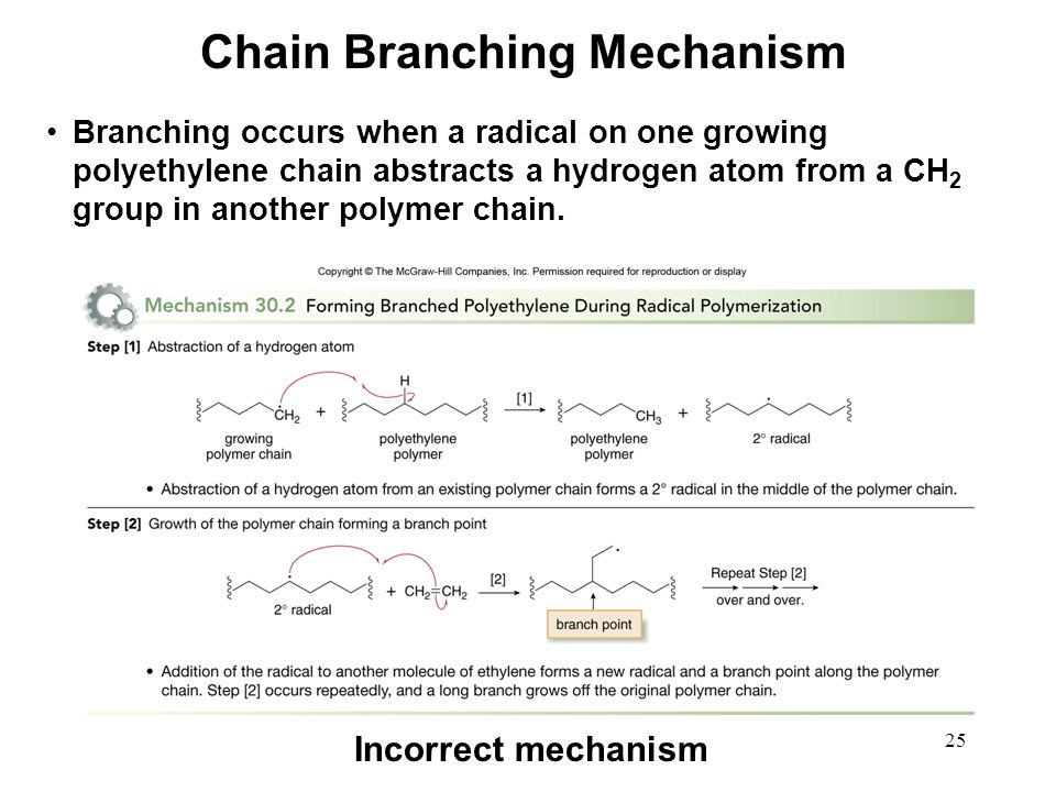 Chain Branching Mechanism