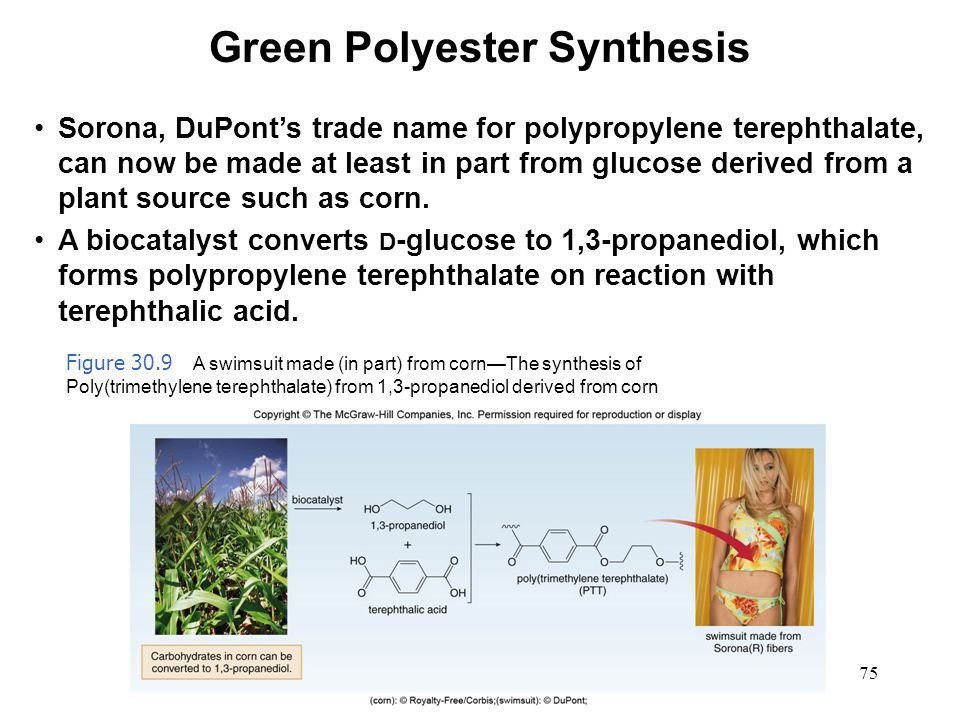 Green Polyester Synthesis