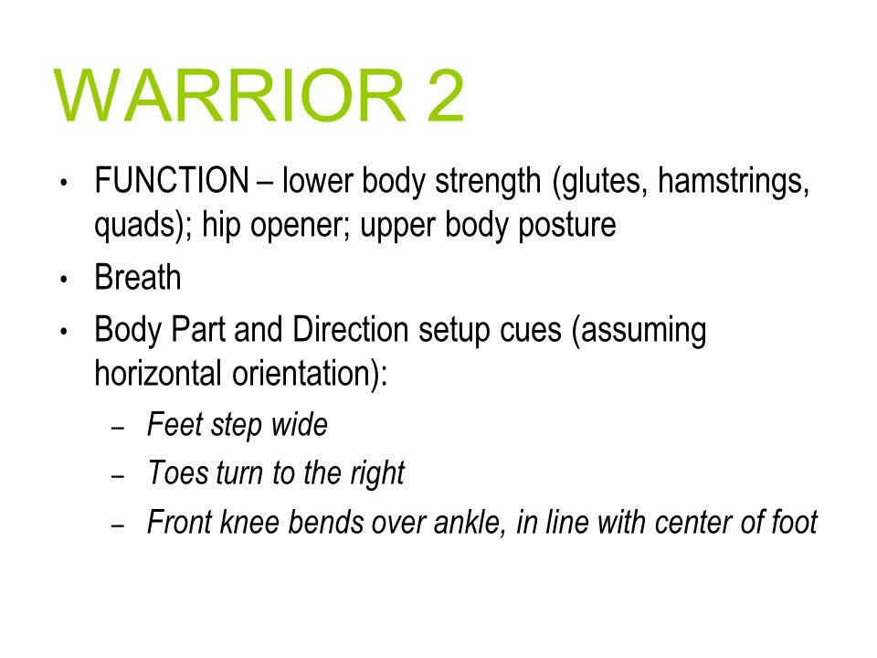 WARRIOR 2 FUNCTION – lower body strength (glutes, hamstrings, quads); hip opener; upper body posture.