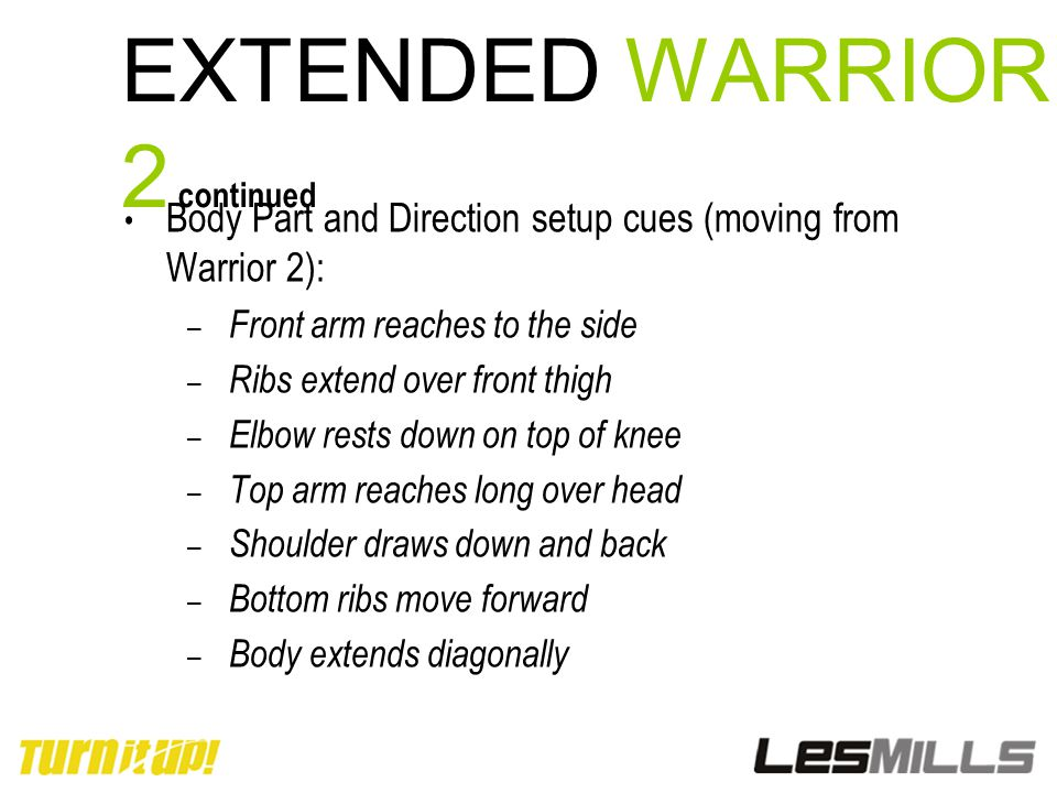 EXTENDED WARRIOR 2 continued