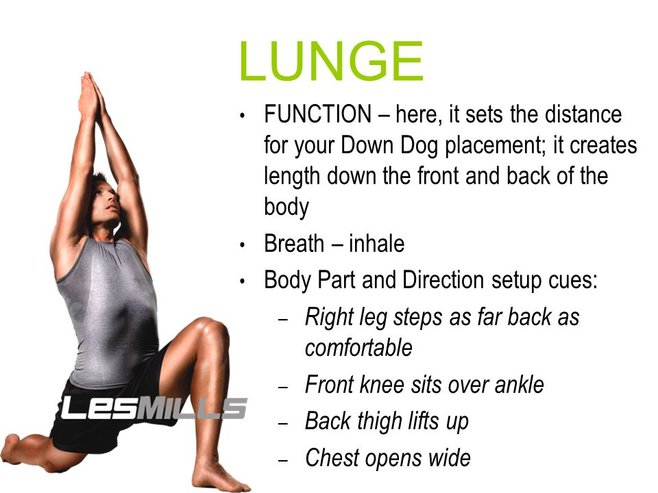 LUNGE FUNCTION – here, it sets the distance for your Down Dog placement; it creates length down the front and back of the body.