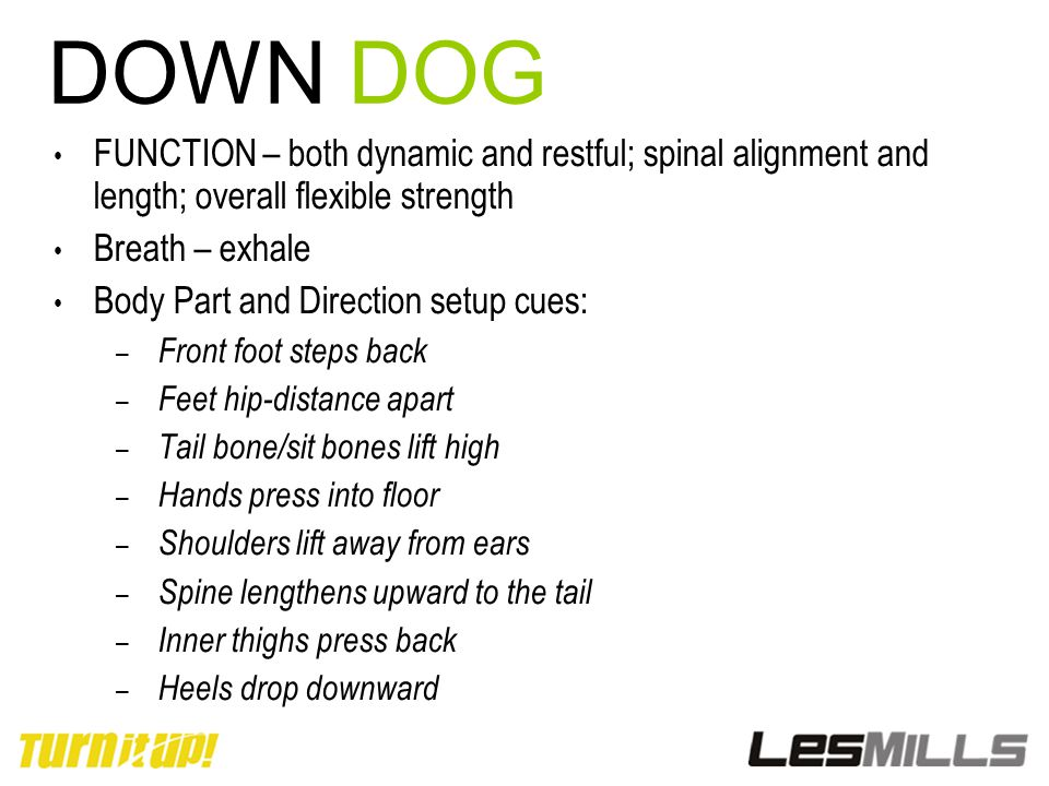 DOWN DOG FUNCTION – both dynamic and restful; spinal alignment and length; overall flexible strength.