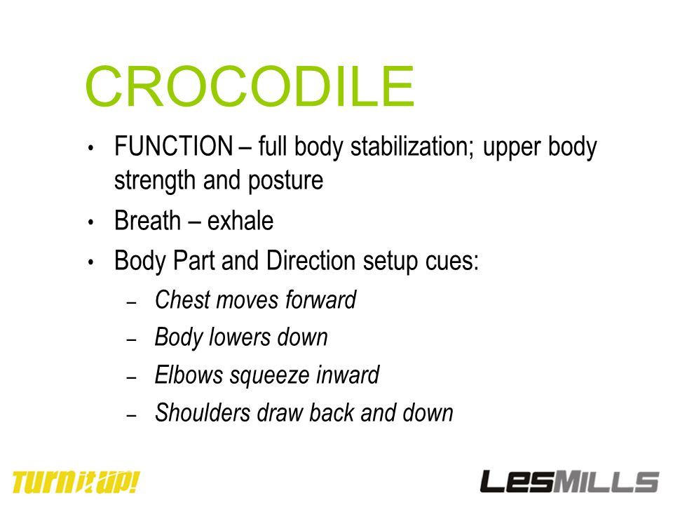 CROCODILE FUNCTION – full body stabilization; upper body strength and posture. Breath – exhale. Body Part and Direction setup cues: