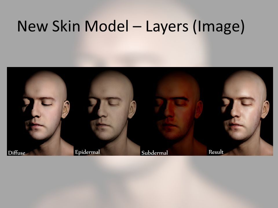 New Skin Model – Layers (Image)