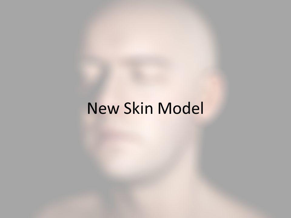 New Skin Model