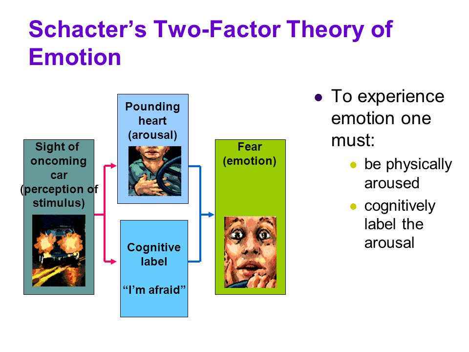 Schacter's Two-Factor Theory of Emotion