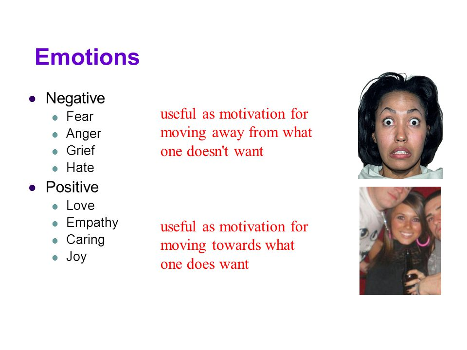 Emotions Negative. Fear. Anger. Grief. Hate. Positive. Love. Empathy. Caring. Joy.