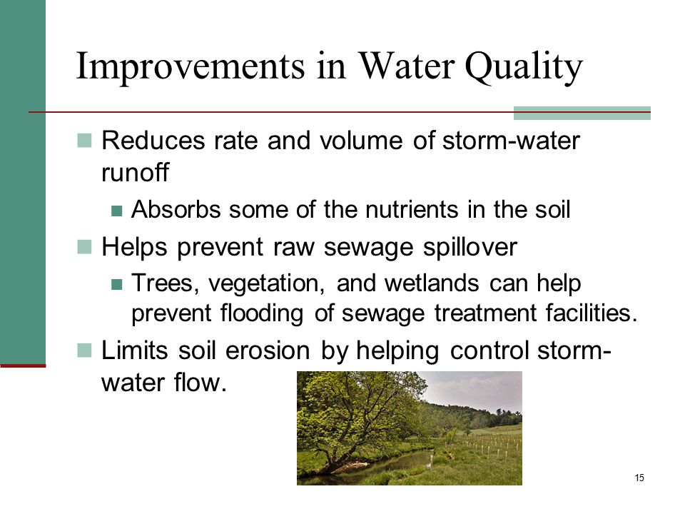 Improvements in Water Quality