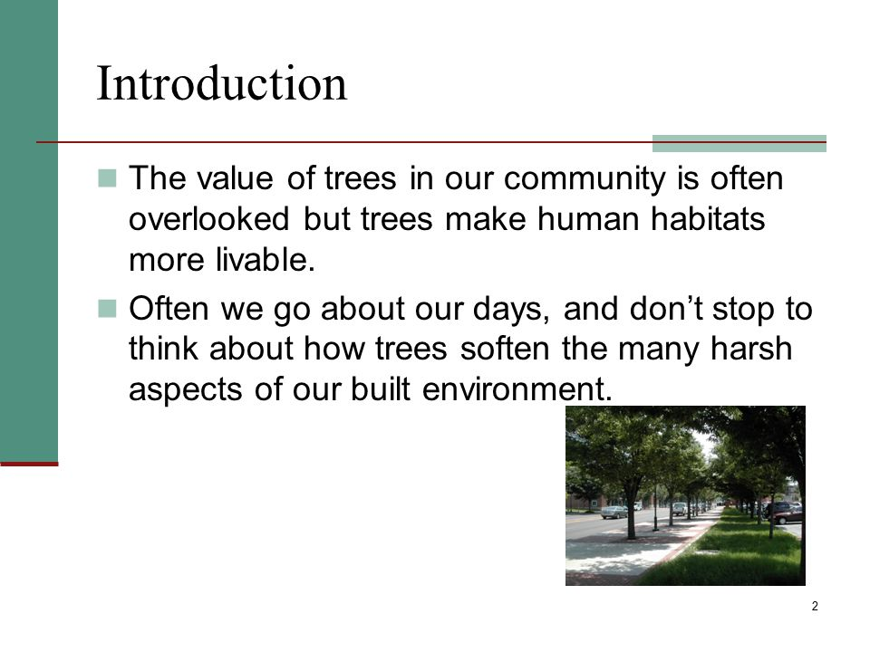 Introduction The value of trees in our community is often overlooked but trees make human habitats more livable.