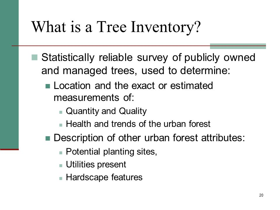 What is a Tree Inventory