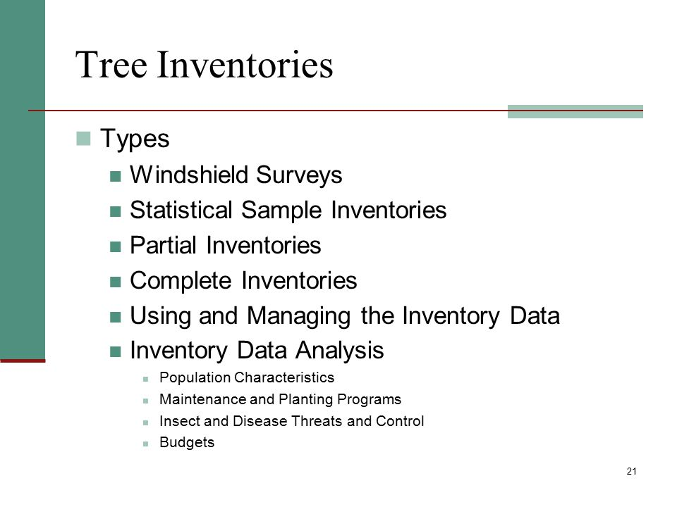 Tree Inventories Types Windshield Surveys