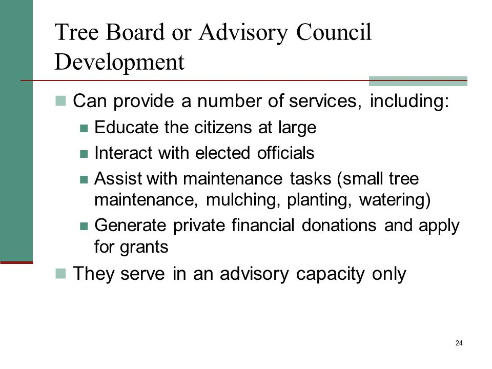 Tree Board or Advisory Council Development