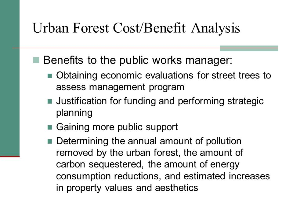 Urban Forest Cost/Benefit Analysis