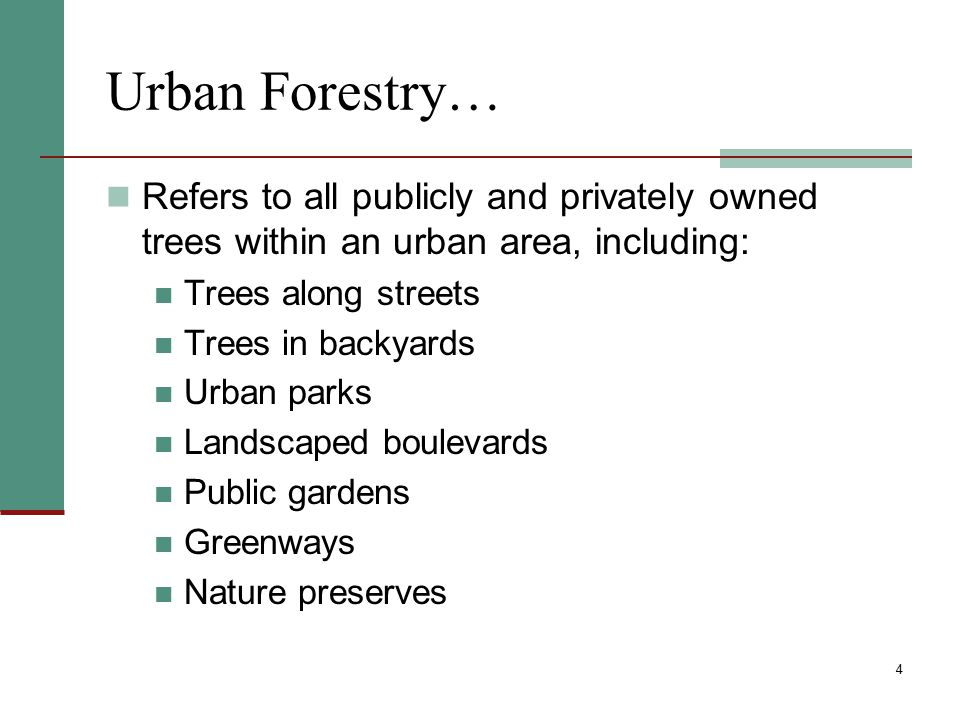 Urban Forestry… Refers to all publicly and privately owned trees within an urban area, including: Trees along streets.