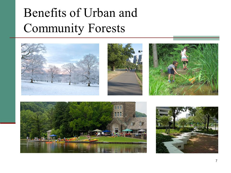 Benefits of Urban and Community Forests
