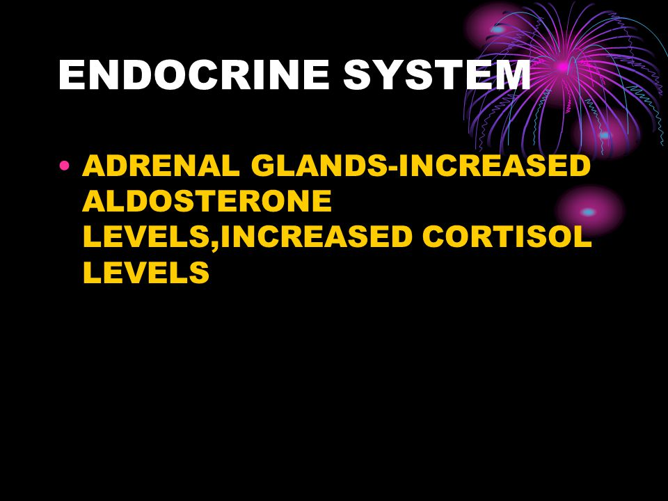 ENDOCRINE SYSTEM ADRENAL GLANDS-INCREASED ALDOSTERONE LEVELS,INCREASED CORTISOL LEVELS