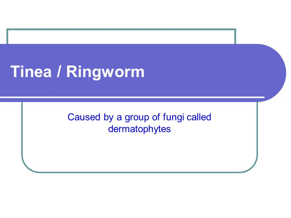 Caused by a group of fungi called dermatophytes