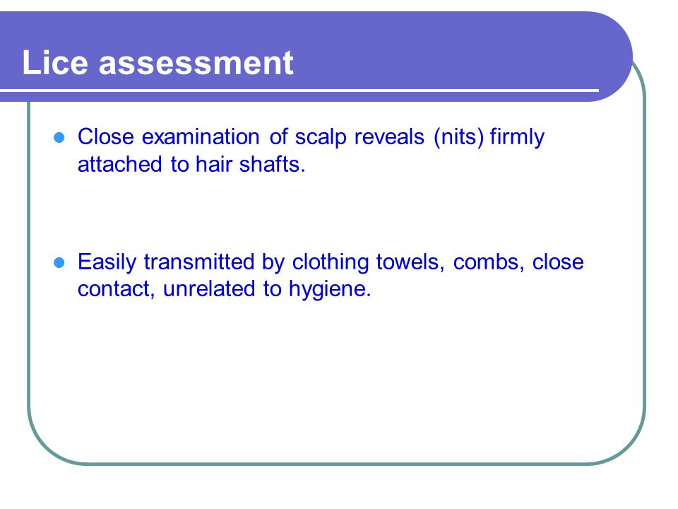 Lice assessment Close examination of scalp reveals (nits) firmly attached to hair shafts.