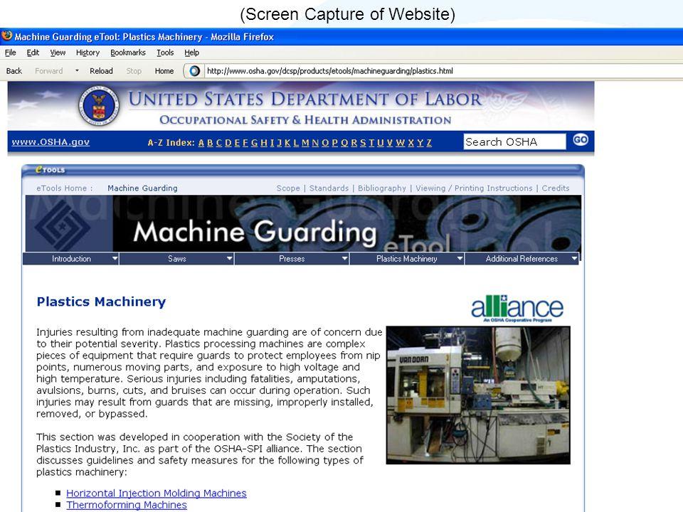 (Screen Capture of Website)