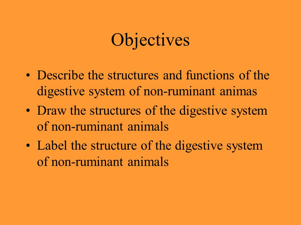 Objectives Describe the structures and functions of the digestive system of non-ruminant animas.