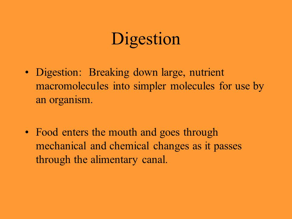 Digestion Digestion: Breaking down large, nutrient macromolecules into simpler molecules for use by an organism.