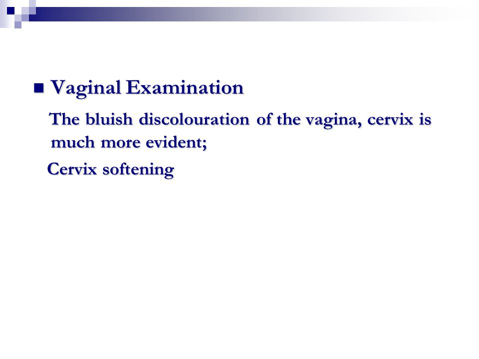 The bluish discolouration of the vagina, cervix is much more evident;