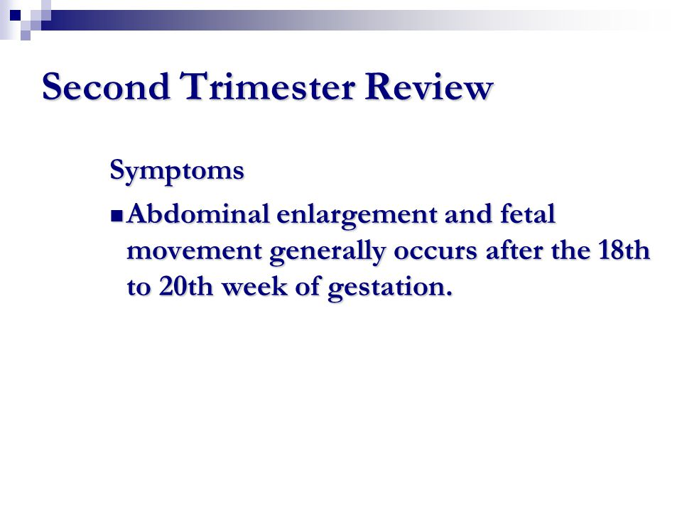 Second Trimester Review