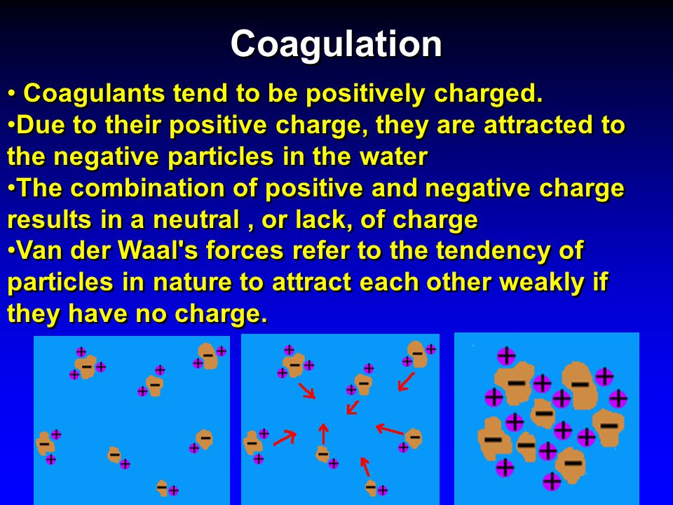 Coagulation Coagulants tend to be positively charged.