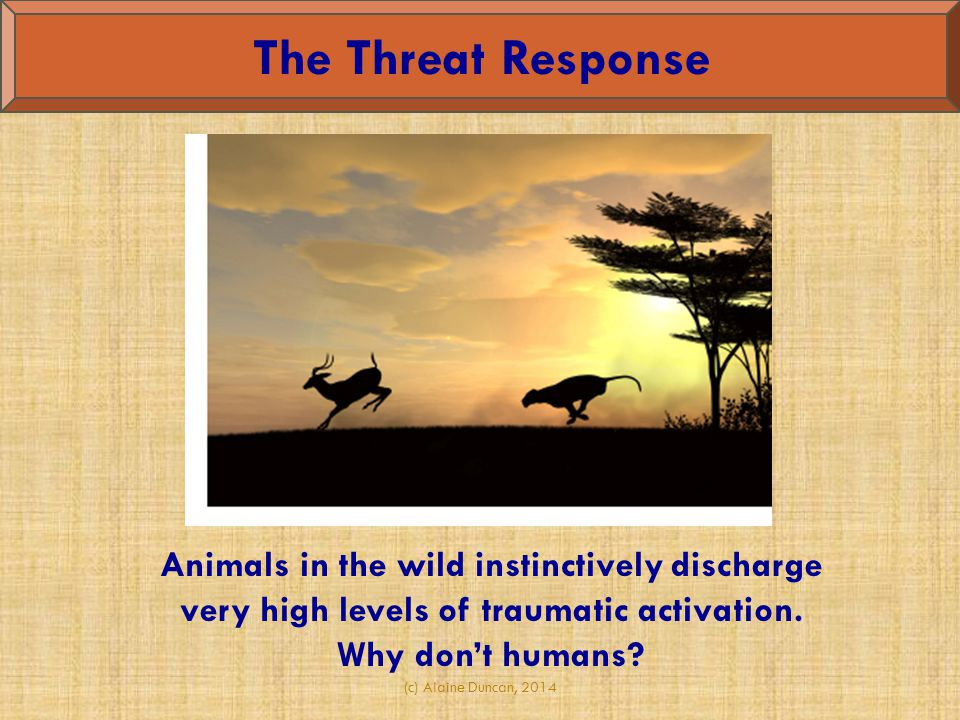 The Threat Response Animals in the wild instinctively discharge