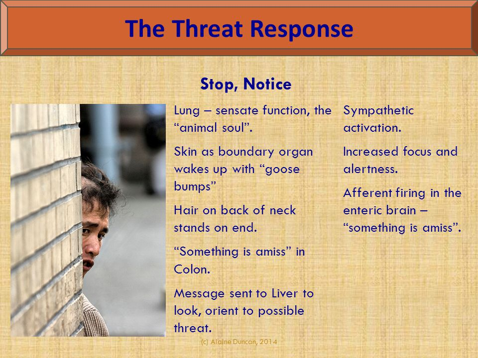 The Threat Response Stop, Notice