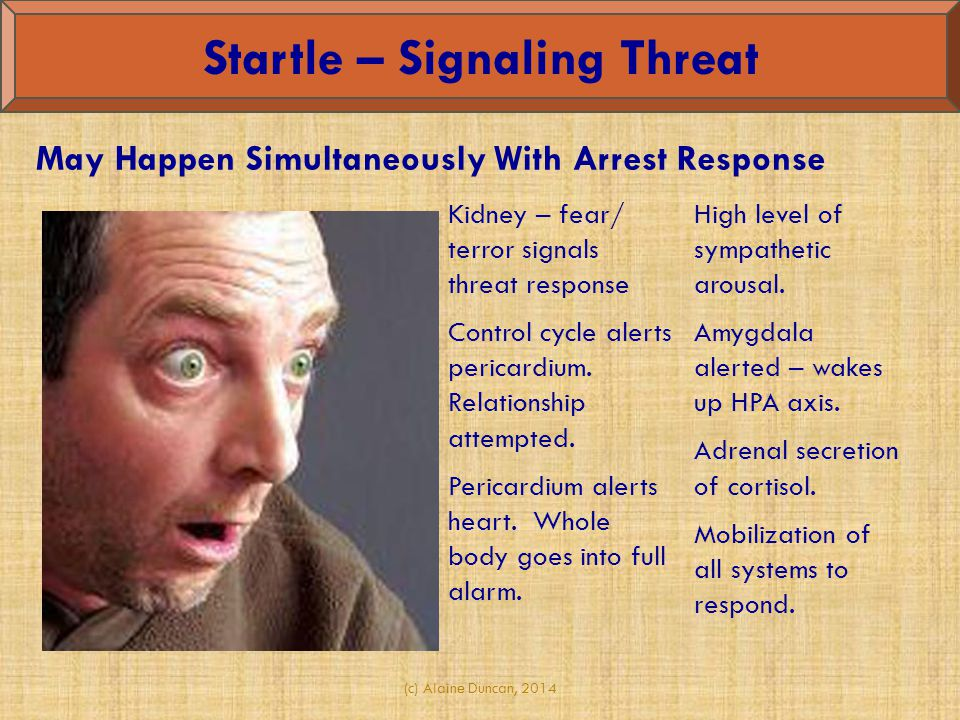 Startle – Signaling Threat