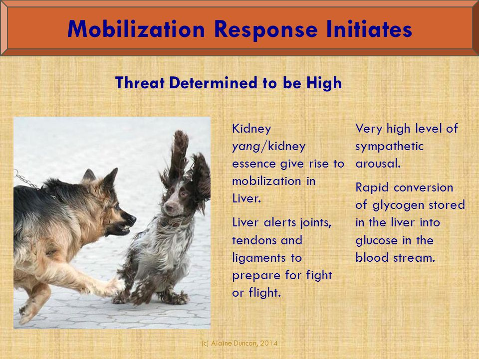 Mobilization Response Initiates Threat Determined to be High