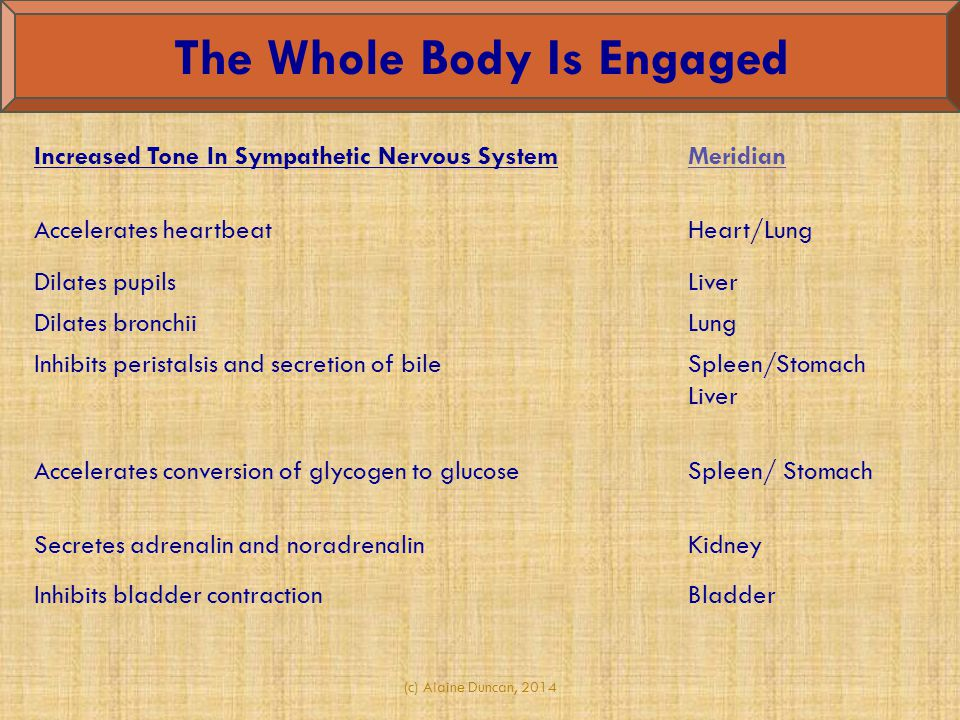 The Whole Body Is Engaged