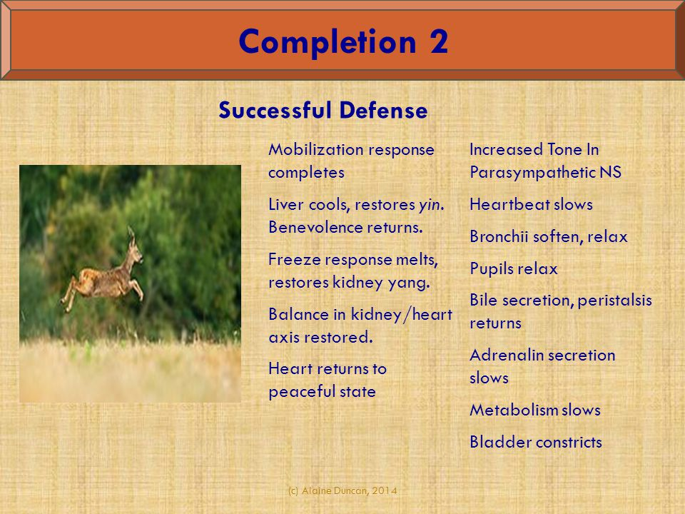 Completion 2 Successful Defense Mobilization response completes