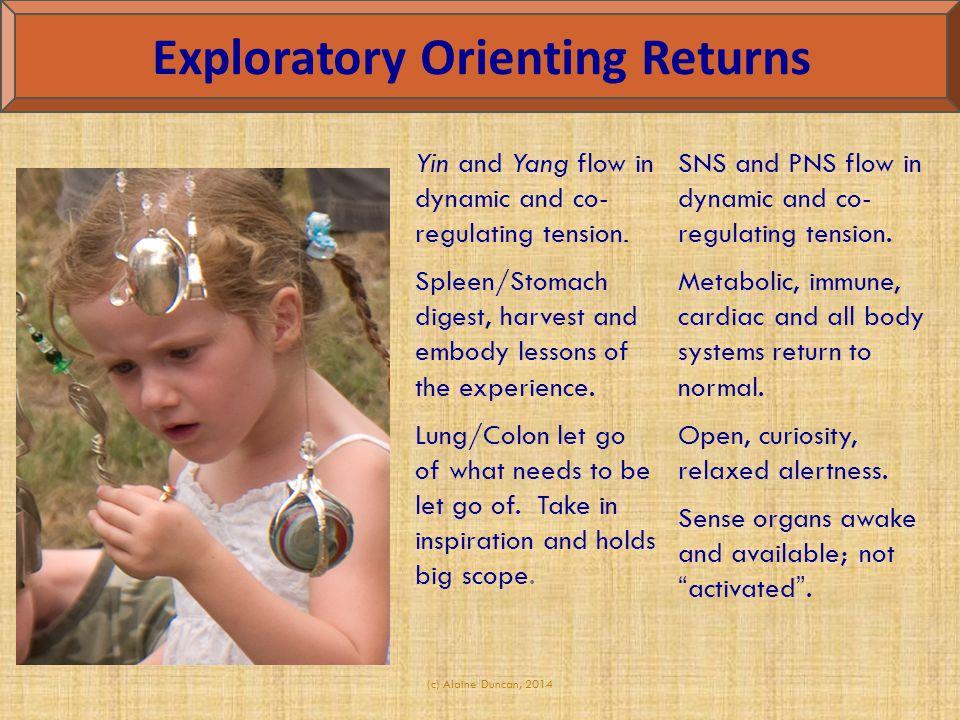 Exploratory Orienting Returns