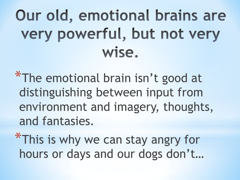Our old, emotional brains are very powerful, but not very wise.