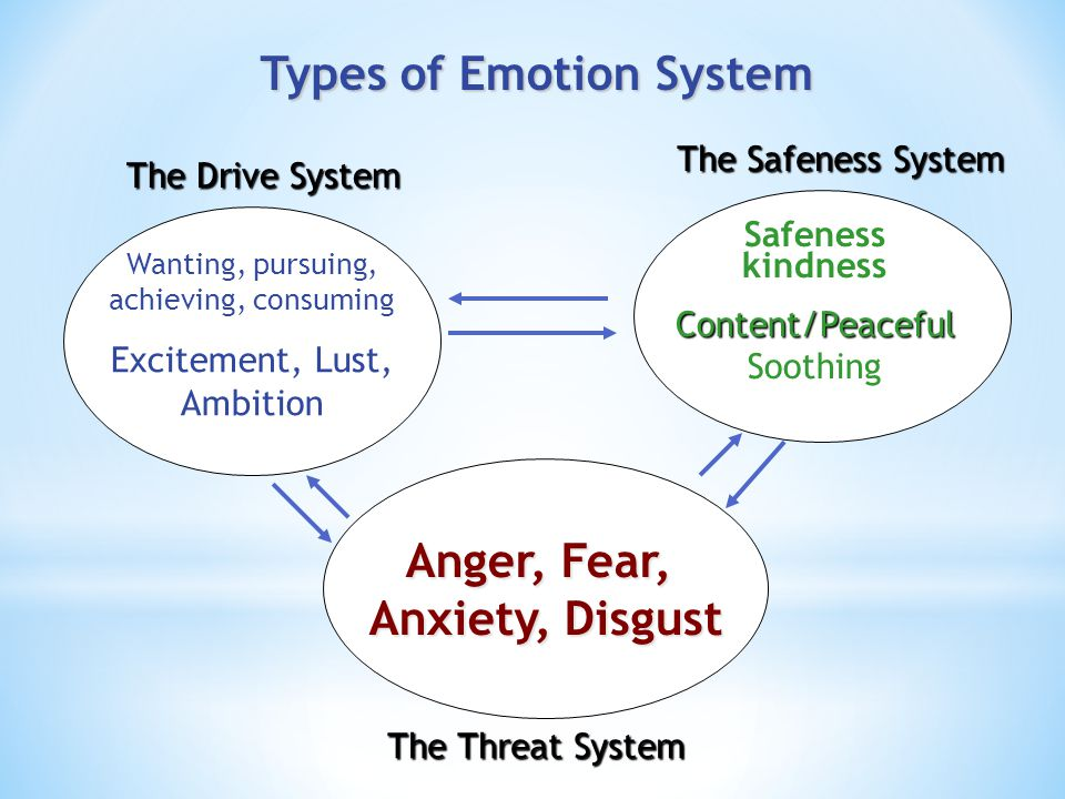 Types of Emotion System