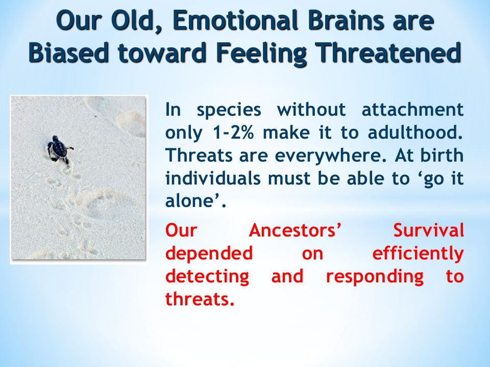 Our Old, Emotional Brains are Biased toward Feeling Threatened