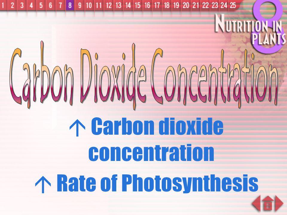 Carbon Dioxide Concentration