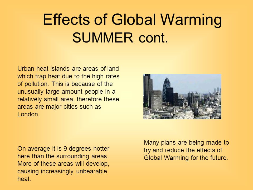 possible effects of global warming essay The center's global warming and endangered species initiative is an example of our coordinated response to the many threats posed by global warming launched in february 2007 through a legal petition filed by the center and allies, the action asked the bush administration to adopt new regulations and take all possible legally authorized.