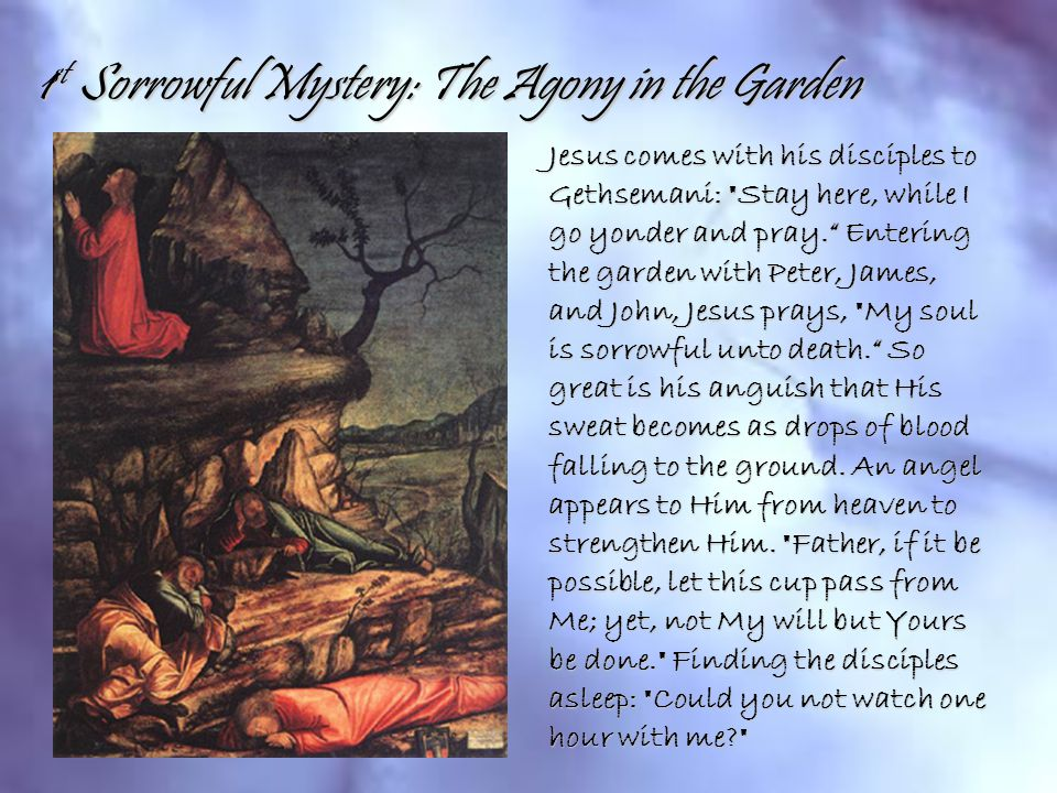 1st Sorrowful Mystery: The Agony in the Garden