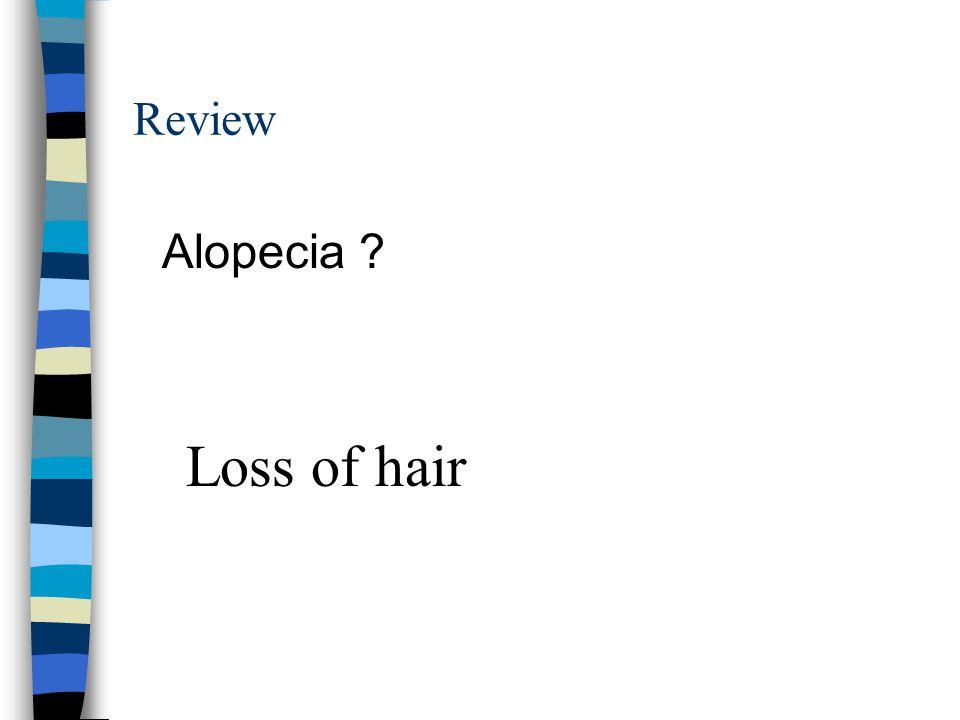 Review Alopecia Loss of hair
